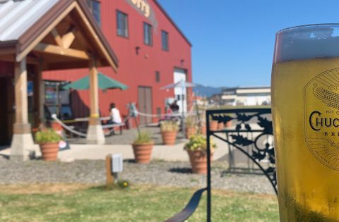 chuckanut brewery outdoor seating