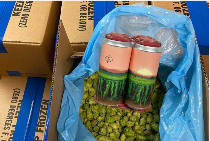 cloudburst brewing yakima freeze fresh hop ale